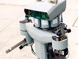 İntihar etmek için robot yaptı.13658