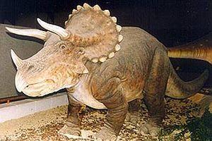Meksika'da yeni bir dinozor türü bulundu.19341