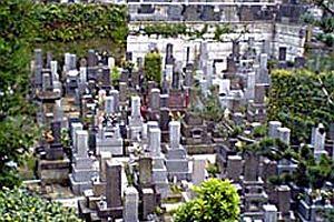 Bosna'da toplu mezar bulundu.25358