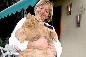 Gerçek Garfield İtalya'da yaşıyor.15626