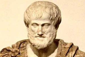 AKP'li vekil Aristo yüzünden eşinden olacaktı.10524