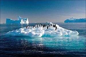 Deniz suyu 1,5 metre yükselecek.16077