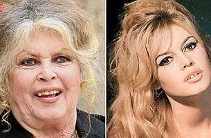 Brigitte Bardot müslümanlara hakaretten mahkemede.18338