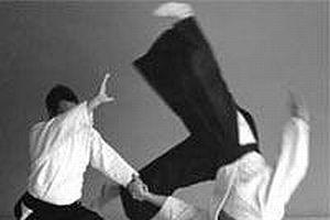 Aikido ustası İstanbul'da.8506