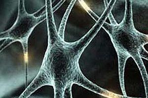 Vücudumuzdaki en yaşlı hücre 15 yaşında.17045