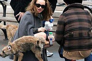 Köpek Natali Portman'a işaret bıraktı.20100