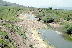 Asi Nehri suya hasret kaldı.21408