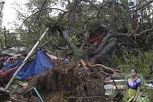 Kasırgada ölenlerin yüzde 40'ı çocuk.22149