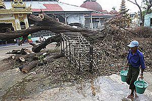 Myanmar felaketi sanıldığından daha büyük.28891