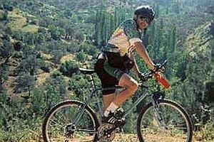 ABD'de bisiklet satışları arttı.23527