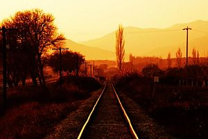 Demiryolu işçisinin trajik ölümü.12059