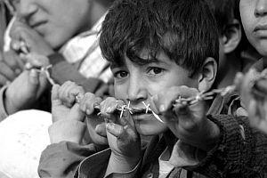 MGK'nın sır raporu: Türkiye'deki etnik grupların nüfusu.15004