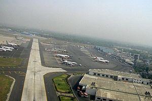Hindistan'da hayvanlar havaalanını istila etti.13152
