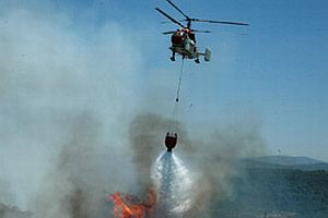 Antalya'de orman yangını.7296