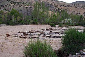 Muson yağmurlarında 36 kişi öldü.18656