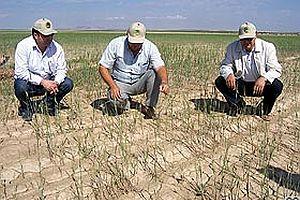 Konya Ovası 'çöl iklimi' sınırına yaklaştı.26476