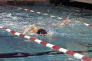 Phelps yine kazandı.20469