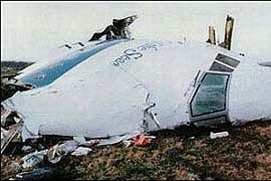Başbakan düşen uçağın pilotunu suçladı.16861