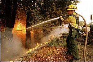 Muğla'daki orman yangını söndürülüyor.20350