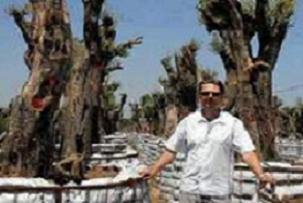 1500 ağaca 600 bin YTL verdi.13918