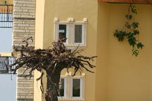Ters ev g�renleri �a��rt�yor FOTO.11548