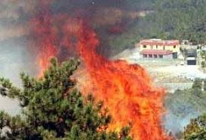 Bodrum'daki yangın korkuttu.13441