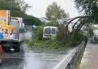 Fırtına İstanbul'un kabusu oldu!.6491