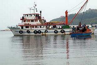 Ayvalık'ta balıkçılar isyanda.14760