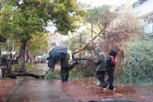 Sarıkamış'ta şiddetli fırtına etkili .14356
