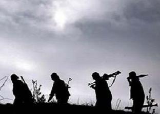 PKK'nın 34 kilo patlayıcısı ele geçirildi.16575