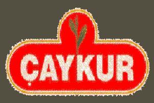 'Diyarbakır Çayı' tanıtıldı.14046