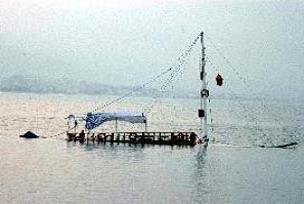 Tekne alabora oldu: 24 ölü.11517