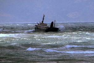 Çin'de konteyner gemisi battı: 5 ölü.11653