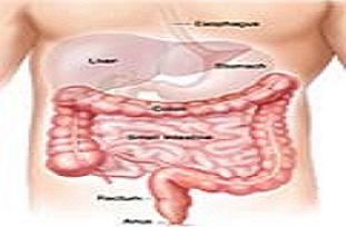 Bağırsak kanserine yeni teşhis yöntemi.11193