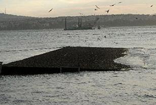 Karaköy iskelesinden hayır yok.14061