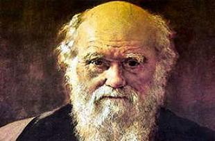 İlahiyat kitabında 'evrim' iddiası.14171