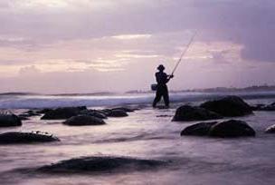 Tatlı suda yakalanan en büyük balık.9301