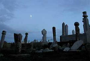 Almanya'da toplu mezar kazılıyor.7639