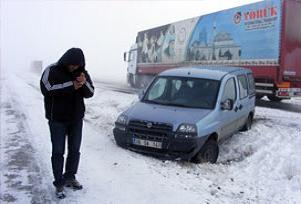 Erzurum yollarında canavara dikkat!.12313