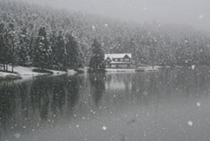 Kar tabiat parkına güzellik kattı.9416