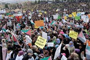 Şanlıurfa'da Filistin'e yardım izdihamı.23817