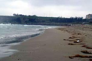 Gelibolu'da deniz suyu 10 m çekildi.8626