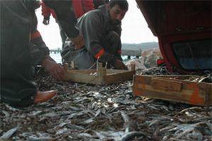 25 Türk balıkçısı tutuklandı.13863