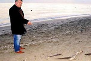 Büyükçekmece'de köpekbalığı korkusu.11318