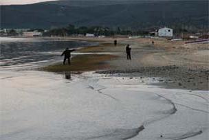 İSKİ: Küçüksu Plajı'nda denize girilebilir.9539