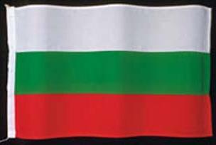 Bulgaristan'da seçimin yankıları.6122