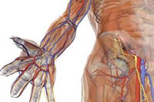 Dikkat edilmesi gereken 8 vücut ağrısı.11595