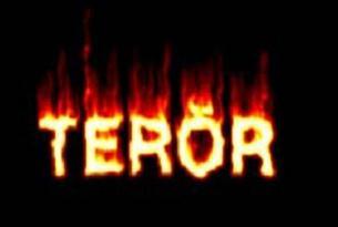 Hakkari ve Tunceli'de terör operasyonu.6644
