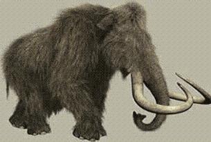 Mamut iskeleti 145 bin euroya satıldı.15001