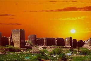 Diyarbakır'da ilk kez Kürt dili bayramı kutlandı.11854